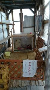 2014.12aomori (5).jpg
