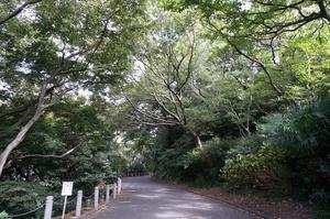 2014.9.26-27kamigou (3) (800x531).jpg