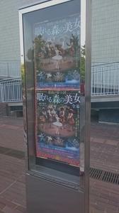 2015.10matsuyama.jpg
