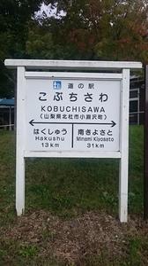 2016.10.1011八ヶ岳 (31) (450x800).jpg