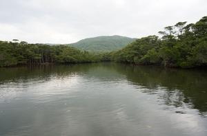 2016.3.1西表島 (5).jpg