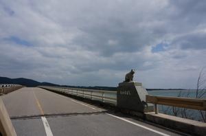 2016.3.1西表島 (9).jpg
