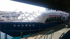 2016.3.3小浜島・石垣島 (1).jpg