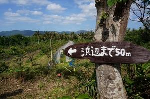 2016.3.3小浜島・石垣島 (16).jpg