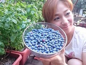 bberry(800x608).jpg