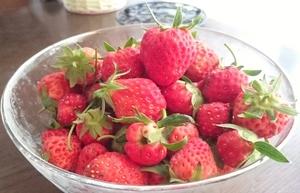 strberry (3).jpg